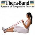 Thera-Band Assist Çekme Aparatı